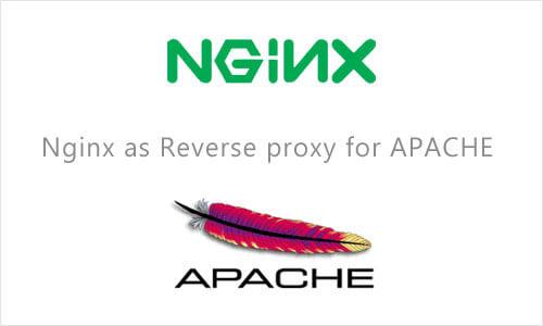 نصب NGINX و APACHE در دایرکت ادمین